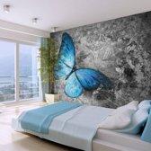 Fotobehang - Vlinder in rust , grijs blauw , 5 maten