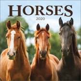 Kalender 2020 paarden (30,5 x 30,5)