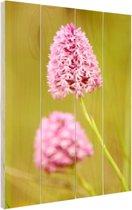 Twee orchideeën Hout 80x120 cm - Foto print op Hout (Wanddecoratie)