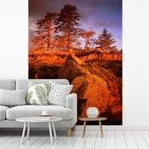 Fotobehang vinyl - Rotsen in het Nationaal park Gwaii Haanas in Noord-Amerika breedte 265 cm x hoogte 350 cm - Foto print op behang (in 7 formaten beschikbaar)