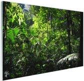 Regenwoud Brazilie  Glas 90x60 cm - Foto print op Glas (Plexiglas wanddecoratie)