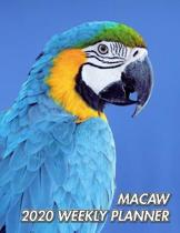 Macaw 2020 Weekly Planner: Blue and Yellow Macaw - Ara ararauna - 2020 Weekly Calendar - 12 Months - 107 pages 8.5 x 11 in. - Planner - Diary - O
