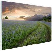 FotoCadeau.nl - Blauwe en paarse bloemen zonsondergang Glas 90x60 cm - Foto print op Glas (Plexiglas wanddecoratie)