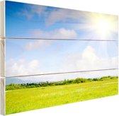 De weide in de zomer Hout 60x40 cm - Foto print op Hout (Wanddecoratie)