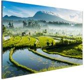 Zonsopkomst rijstveld Tirtagangga Bali Aluminium 120x80 cm - Foto print op Aluminium (metaal wanddecoratie)