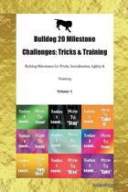 Bulldog 20 Milestone Challenges