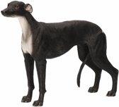 Beeldje Windhond 18 cm - Honden beeld
