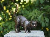 Bronzen Beeld: Kat