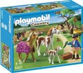 Playmobil Paddock met Paardenfamilie - 5227