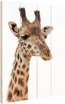 Portret van een giraffe Hout 80x120 cm - Foto print op Hout (Wanddecoratie)