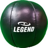 Lederen Medicijn Ball 5kg
