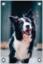 Tuinposter –Vrolijke Hond– 80x120cm Foto op Tuinposter (wanddecoratie voor buiten en binnen)
