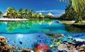 Fotobehang Natuur | Blauw Groen | 416x254