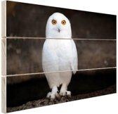 Sneeuwuil Hout 30x20 cm - klein - Foto print op Hout (Wanddecoratie)