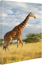 Giraffe bij zonsopgang Canvas 60x80 cm - Foto print op Canvas schilderij (Wanddecoratie)