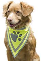Pet Products Reflecterend Veiligheidshalsdoekje L