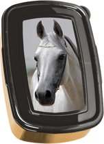 Animal Pictures Golden Horse - Lunchbox - 18,5 x 13 cm - Multi