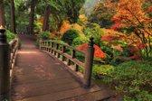 Papermoon Autumn Bridge Vlies Fotobehang 250x186cm 5-Banen