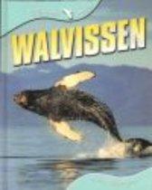 Dierenleven - Walvissen