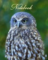 Notebook/ Journal - Ruru (Morepork) New Zealand's Native Owl