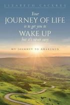 Your Journey of Life Is to Get You to Wake Up But It's Never Easy