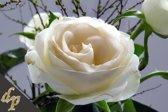 Diamond Painting | Witte roos 02 - 45 x 30 cm (Volledige bedekking - Vierkante steentjes)