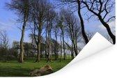 Hoge bomen op het platteland van het Engelse Nationaal park South Downs Poster 90x60 cm - Foto print op Poster (wanddecoratie woonkamer / slaapkamer)