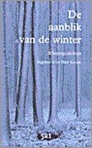 De Aanblik Van De Winter