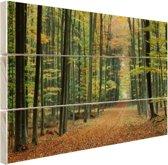 Een bospad in de herfst Hout 160x120 cm - Foto print op Hout (Wanddecoratie) XXL / Groot formaat!