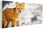 Rode vos Hout 30x20 cm - klein - Foto print op Hout (Wanddecoratie)
