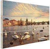 Zwanen Karelsbrug Praag Hout 80x60 cm - Foto print op Hout (Wanddecoratie)