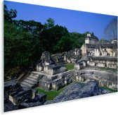 Maya-ruïnes van oude stad Tikal Plexiglas 60x40 cm - Foto print op Glas (Plexiglas wanddecoratie)