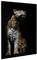 Luipaard portret  Glas 80x120 cm - Foto print op Glas (Plexiglas wanddecoratie)