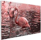 Roze flamingos in water met reflectie Glas 90x60 cm - Foto print op Glas (Plexiglas wanddecoratie)