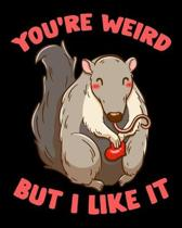 You're Weird But I Like It: Adorable You're Weird But I Like It Cute Anteater Animal 2020-2021 Weekly Planner & Gratitude Journal (110 Pages, 8'' x
