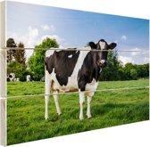Zwart witte Koe Hout 80x60 cm - Foto print op Hout (Wanddecoratie)