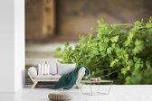 Fotobehang vinyl - Fel groene peterselie met een vervaagde achtergrond breedte 360 cm x hoogte 240 cm - Foto print op behang (in 7 formaten beschikbaar)