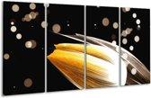 Glasschilderij Tulp | Oranje, Zwart | 160x80cm 4Luik | Foto print op Glas |  F004975