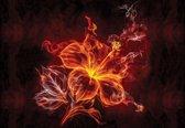 Fotobehang Flower | XXXL - 416cm x 254cm | 130g/m2 Vlies