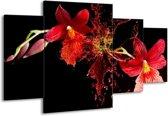 Canvas schilderij Art | Rood, Zwart | 160x90cm 4Luik