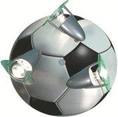 Niermann Plafondspot Voetbal