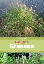 Basisgids Grassen [Basic Guide to Grasses]