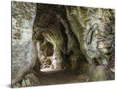Pad tussen Waitomo Caves in Nieuw-Zeeland Aluminium 160x120 cm - Foto print op Aluminium (metaal wanddecoratie) XXL / Groot formaat!