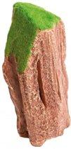 Sf fossiel houtdecoratie M 16x8x6cm