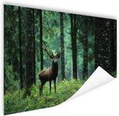 Edelhert in het bos Poster 180x120 cm - Foto print op Poster (wanddecoratie woonkamer / slaapkamer) / Dieren Poster XXL / Groot formaat!