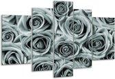 Glas schilderij Bloemen, Roos | Grijs, Groen | 170x100cm 5Luik | Foto print op Glas |  F006810