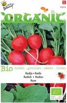 2 stuks Organic Radijs Raxe (Skal 14275)