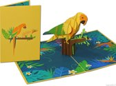 Popcards popupkaarten – Vogel, papegaai, tropisch, oerwoud, jungle vol kleuren voor felicitatie verjaardag pop-up kaart