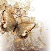 Diamond Painting pakket volwassenen | Aquarel Beige vlinder - 60 x 60 cm | Volledige bedekking met vierkante steentjes | FULL | DP Diamond Paintings