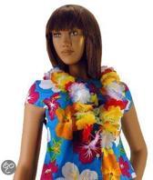 2 stuks Hawaii krans multie kleurig